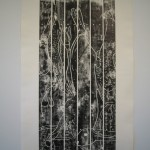 Print from picnic table (After Gould), 2010, Relief ink on cotton rag, 85 x 165cm
