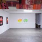 Install view, Lindberg Galleries, 2011