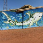 James Dodd Umbakumba TIger Shark Mural 2