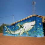 James Dodd Umbakumba Tiger Shark Mural 1